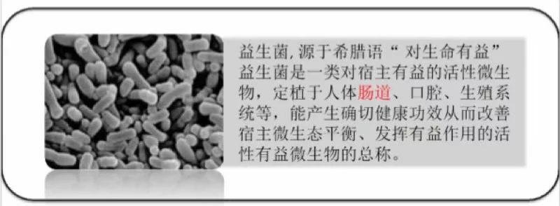 萍萍老师4.19号课题是:测测你的肠道是否健康