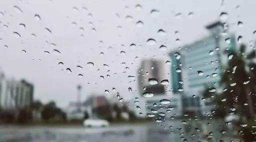 本周多阴雨,气温较适宜