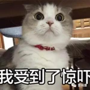 五月天亚洲图片婷婷