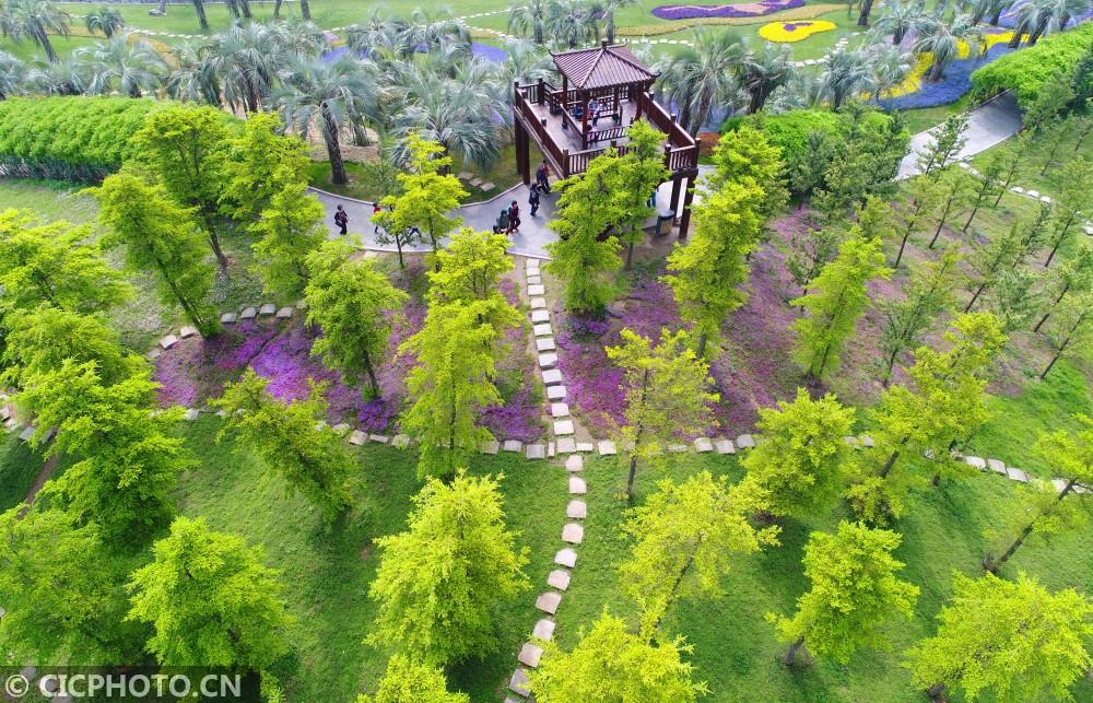 政务 正文  以上图片:2019年4月24日拍摄的南通洲际绿博园美景.