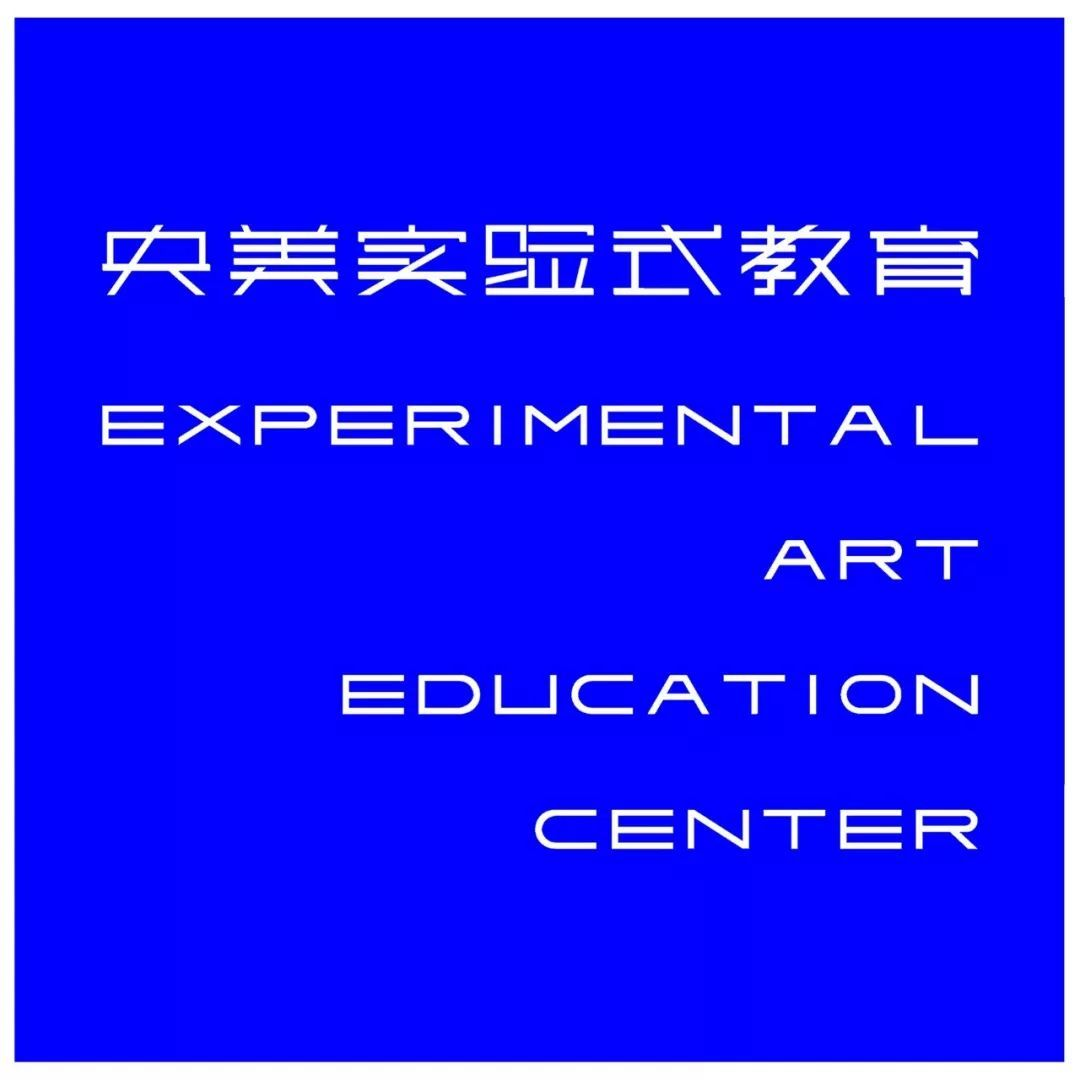 张国龙   央美实验艺术导师(六)