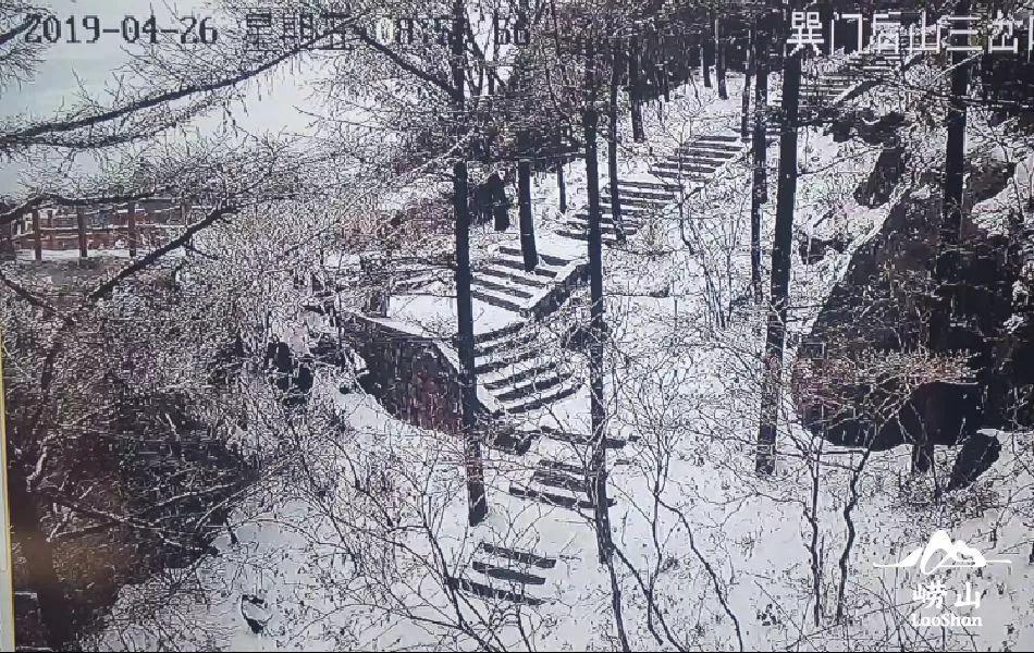 崂山下雪,日照下冰雹!说好的人间四月天呢?青岛接下来的天气…(多图+视频)