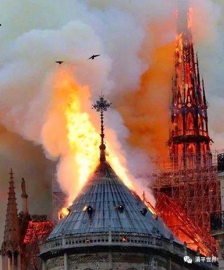 幽灵纵火圣母院
