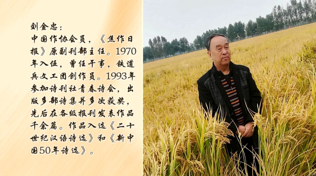【亿祥《知己说》】刘金忠: 曾经当过兵 难忘激情岁月(下)