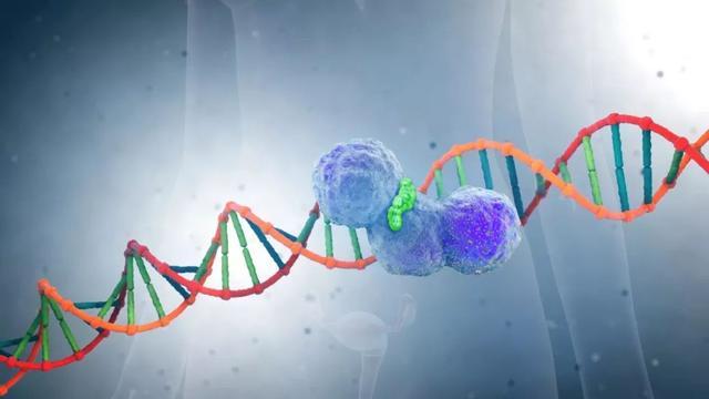 全面突击!击中癌细胞软肋的新型抗癌药,正在让多种癌症自取灭亡丨奇点搜神记
