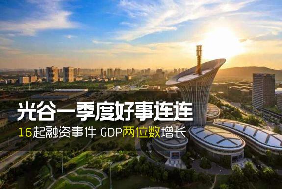 光谷gdp 2021_世界gdp排名2021