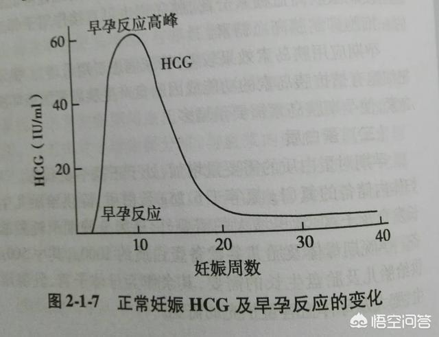 孕酮104hcg234是怀孕吗?