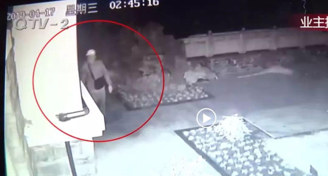 龙岩人注意!看到这种标志要当心!多家接连被盗!监控记录惊人一幕!