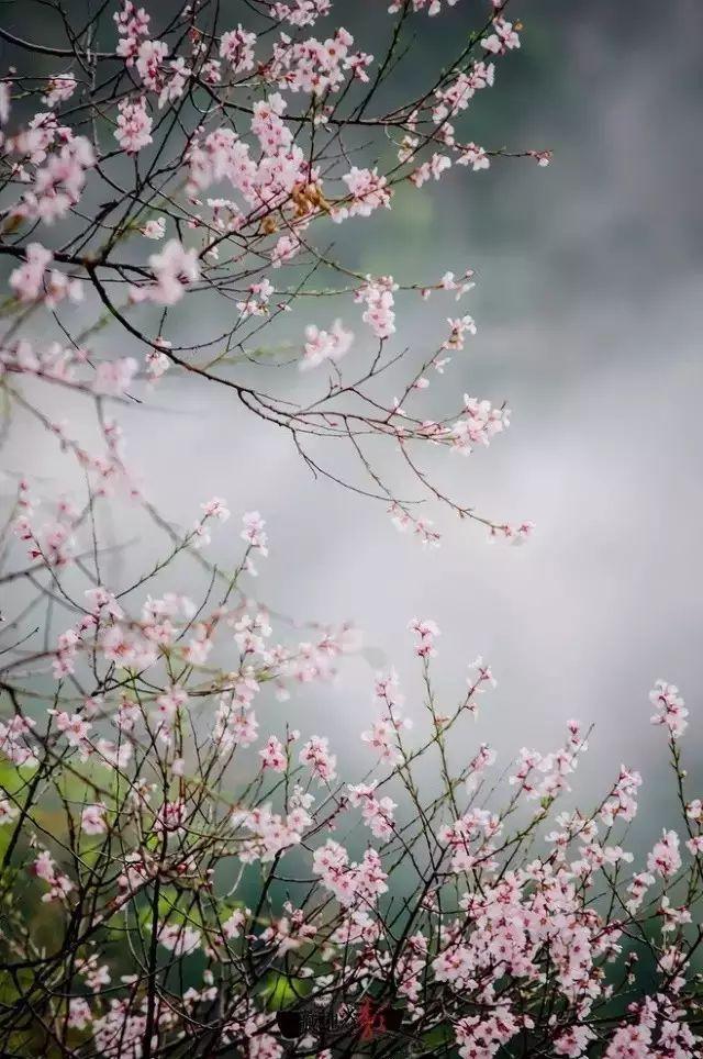 4月再见,5月你好 最美的风景,就在你身边