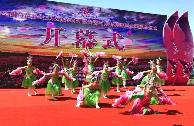 2019亳州芍花养生文化旅游系列活动开幕 将持续15日
