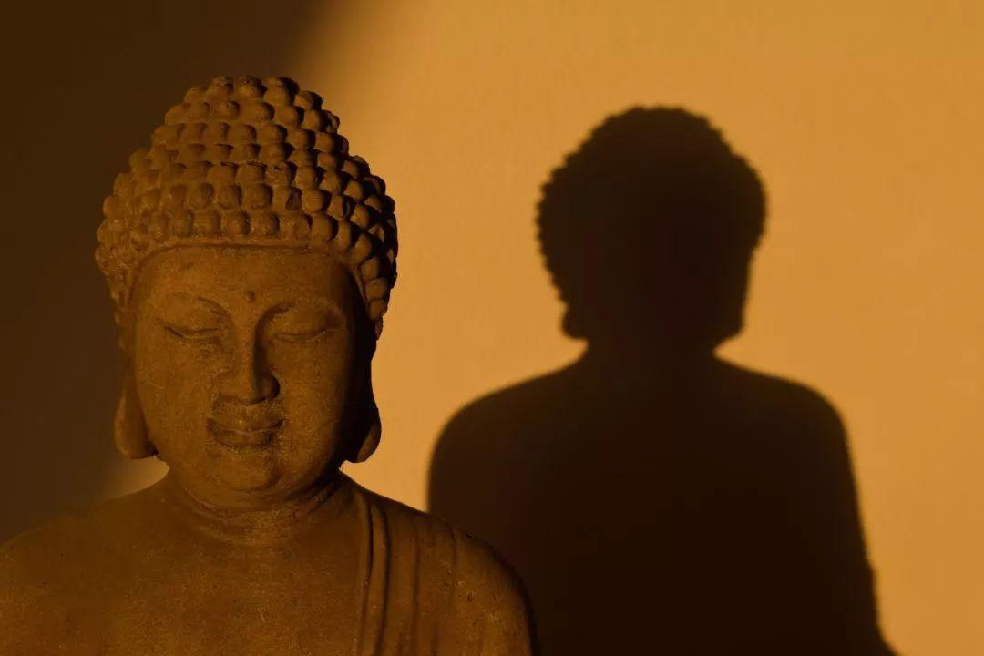 《佛遗教经》Vol.07丨对于修道者来说,最难降伏的恐怕就是自己的心!
