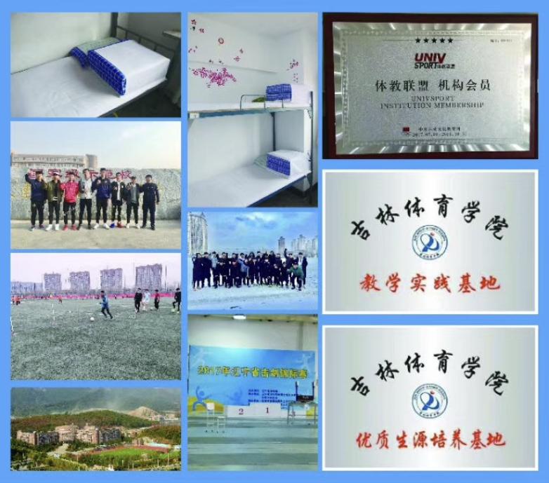 浩天v体育体育计划2019年招生简章2015德育工作升学小学图片