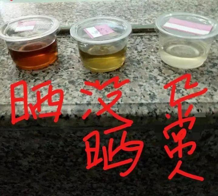 九州娱乐金百利网
