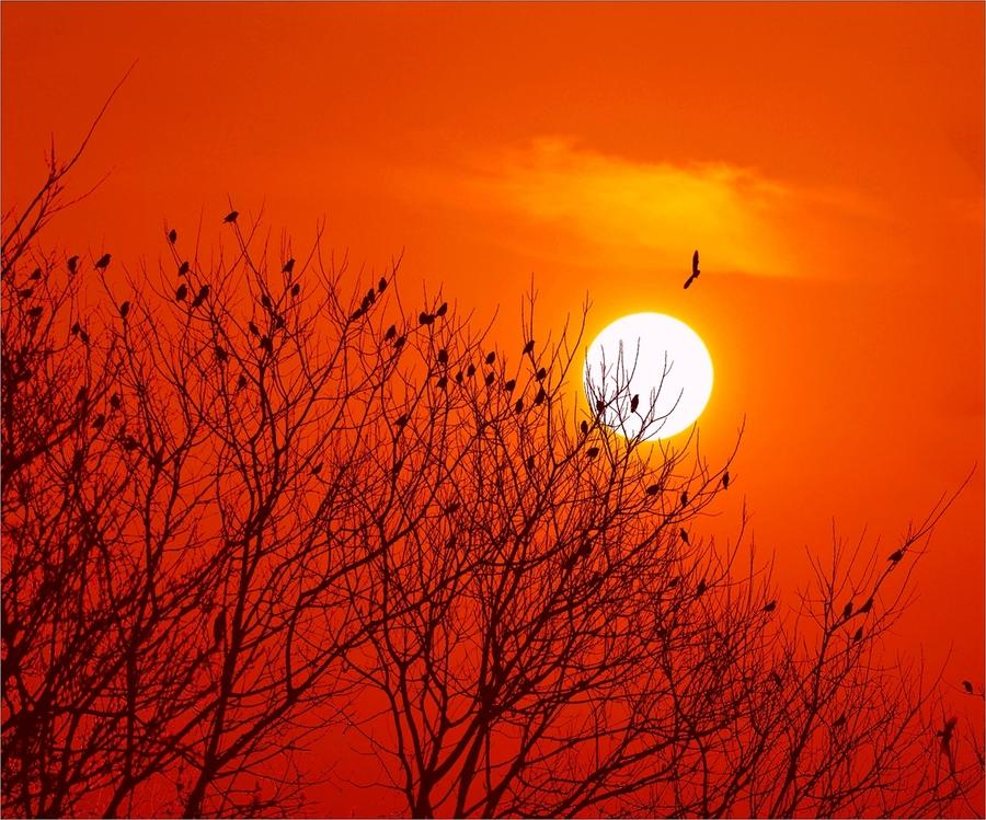 "<b>李商隐一首登楼抒怀的唐诗,很有""夕阳西下,断肠人在天涯""意境</b>"