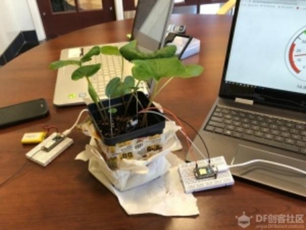 如何製作植物監測儀