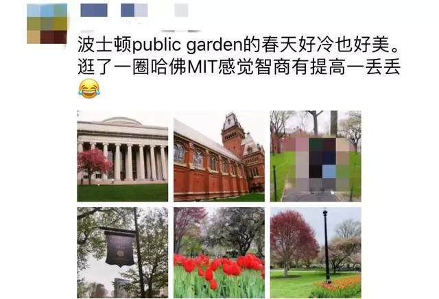 2019年深圳常住人口_2019年留学人员来深圳创业前期费用补贴最新消息