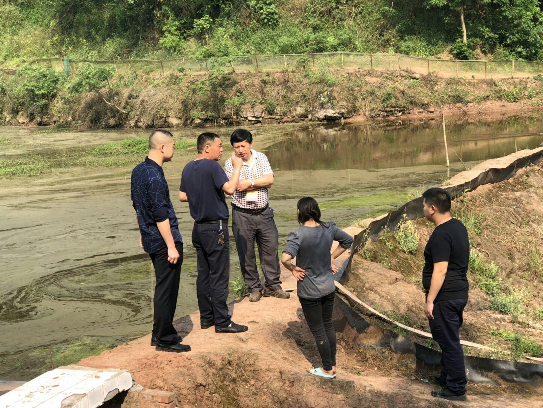 沿滩:农民工党建引领乡村振兴