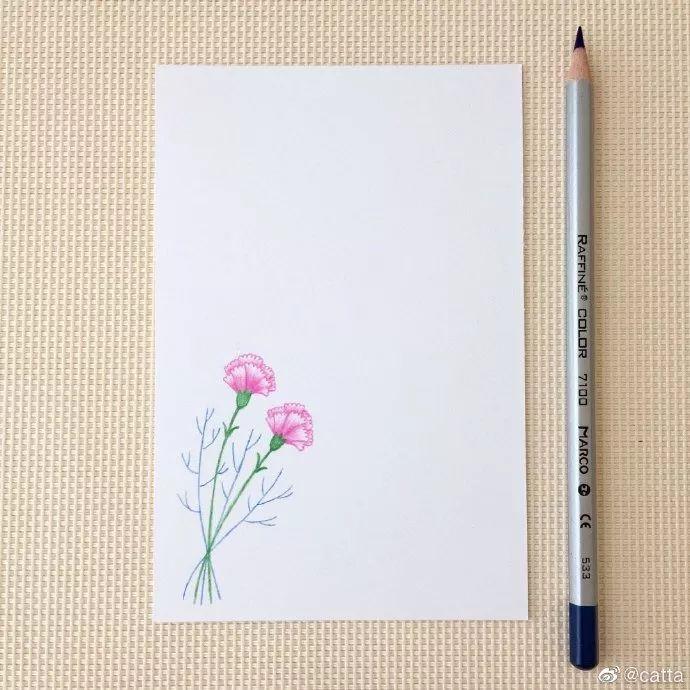 简笔画教程 画一张康乃馨祝福卡片