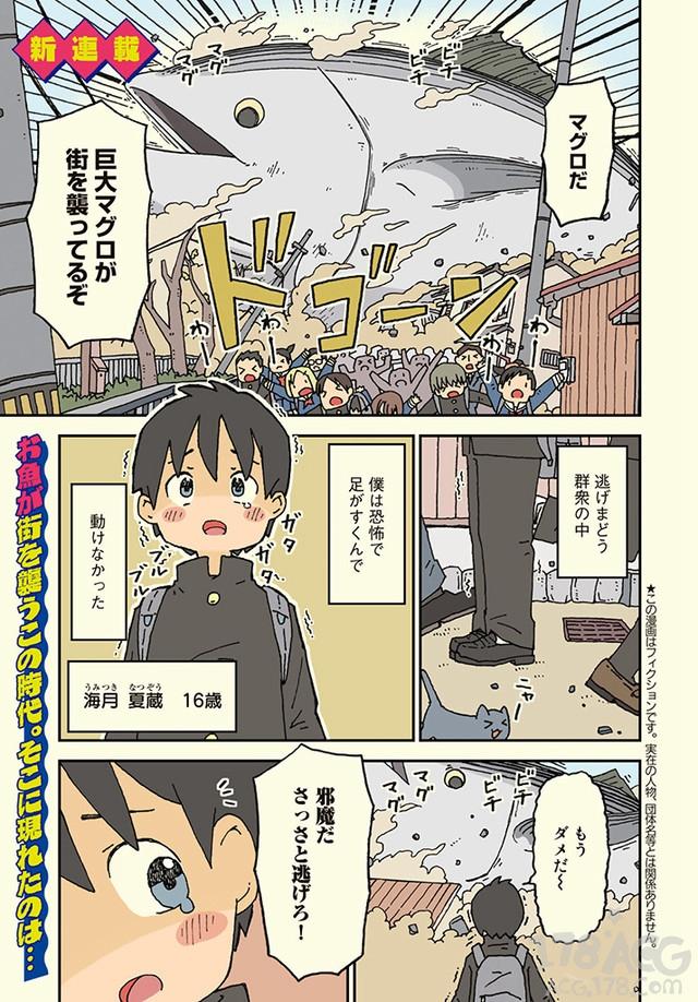 鲨鱼女孩和平凡男高中生相遇,漫画「鲨鱼女孩」开始连载