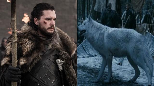 权游导演揭示,为什么琼恩离开临冬城时,他没爱抚那只心爱的白灵