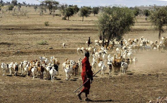 用泥巴当防晒霜,随地吐痰做问候,带你探秘非洲人民奇葩的文化