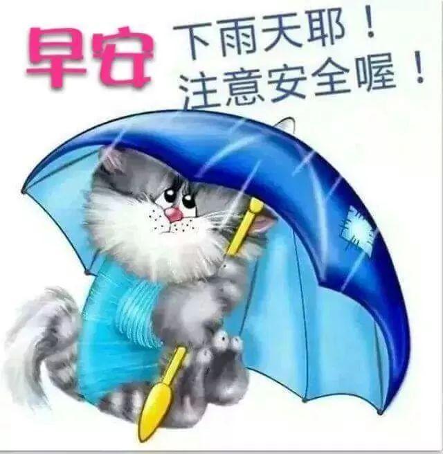 下雨天早上好,很漂亮的早晨祝福问候语语动态图片大全图片