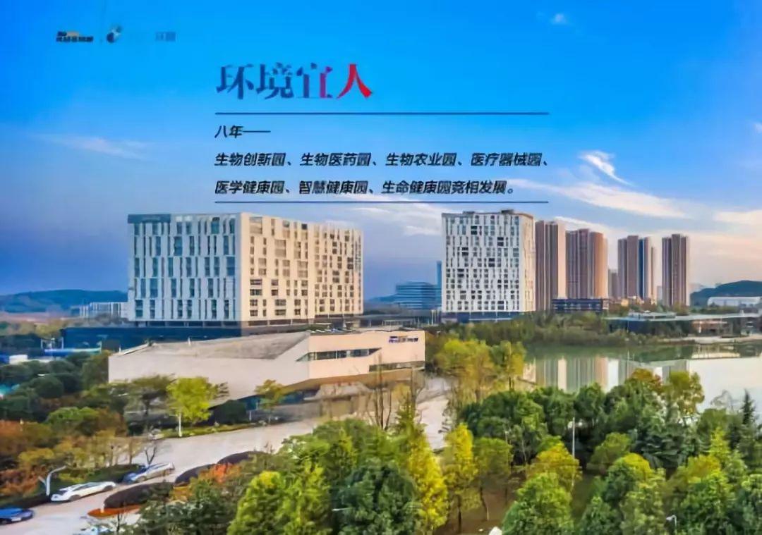 武汉人口2019_武汉光谷多重身份被 揭穿 ,到底哪个真