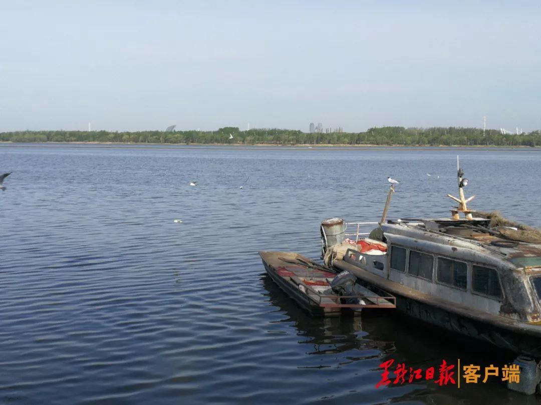 77天!5月16日开始松花江流域禁渔|准备工作就绪