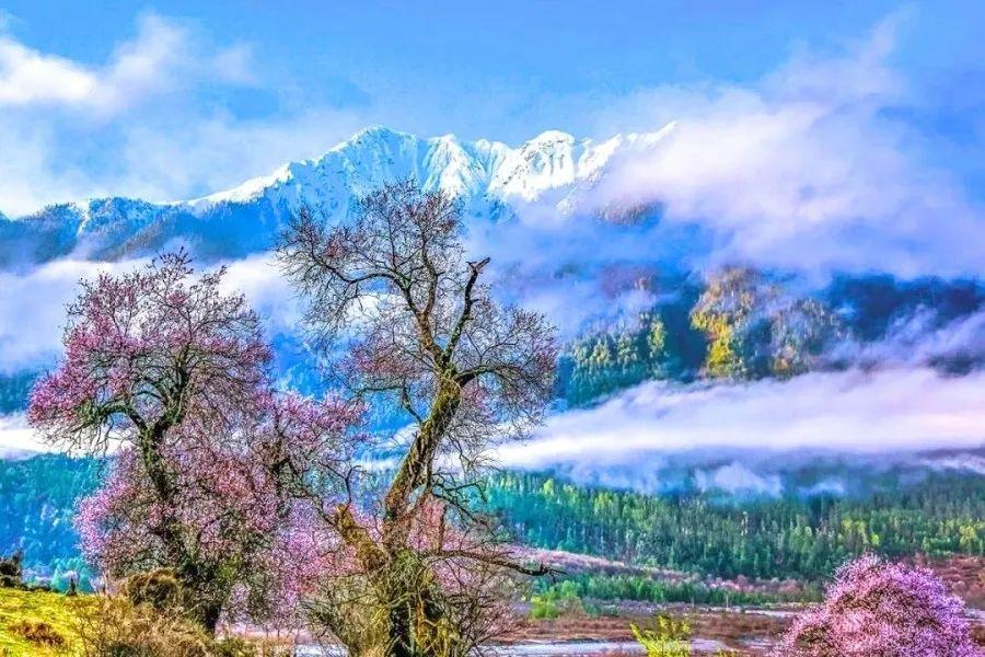 一起探索西藏最美景区