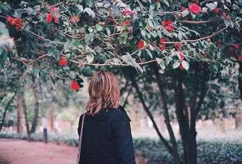 小清新 做一个简单的人挺好 唯美女生背影小清新图片