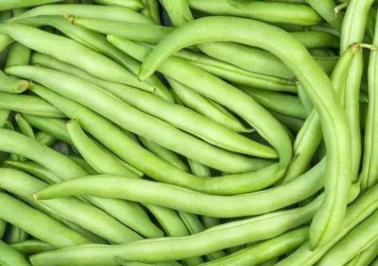 这7种蔬菜没煮熟,千万不要吃!