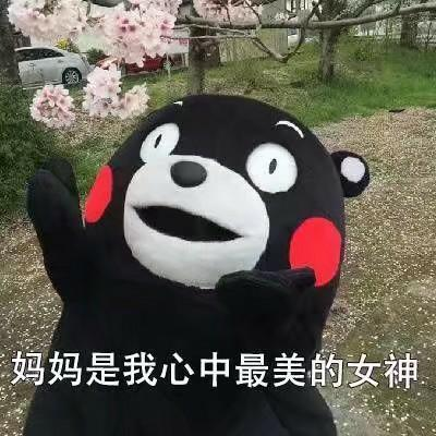 熊本熊母亲节表情包|天大地大妈妈最大