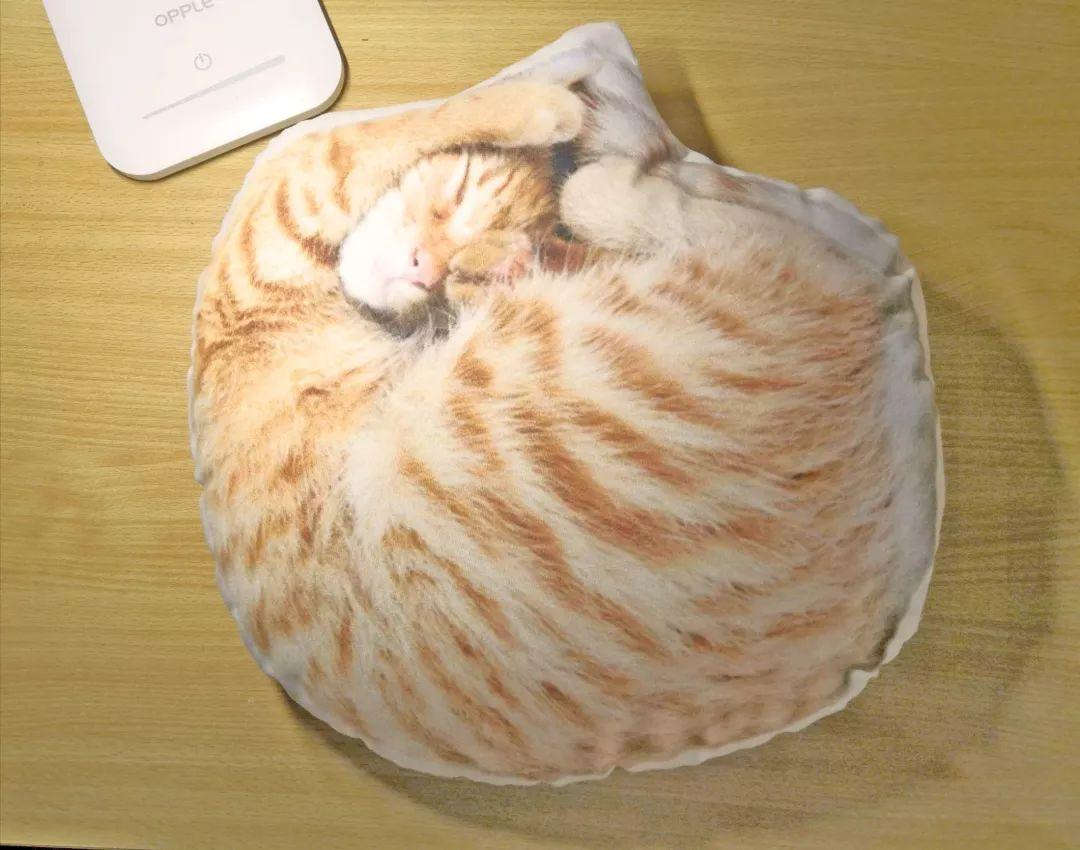 小奖品 活动期间,我们每天将送出 1个猫猫抱枕, 1个中大胸针, 1套