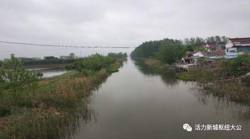 【攻坚动态】大公镇各村持续加强河道整治