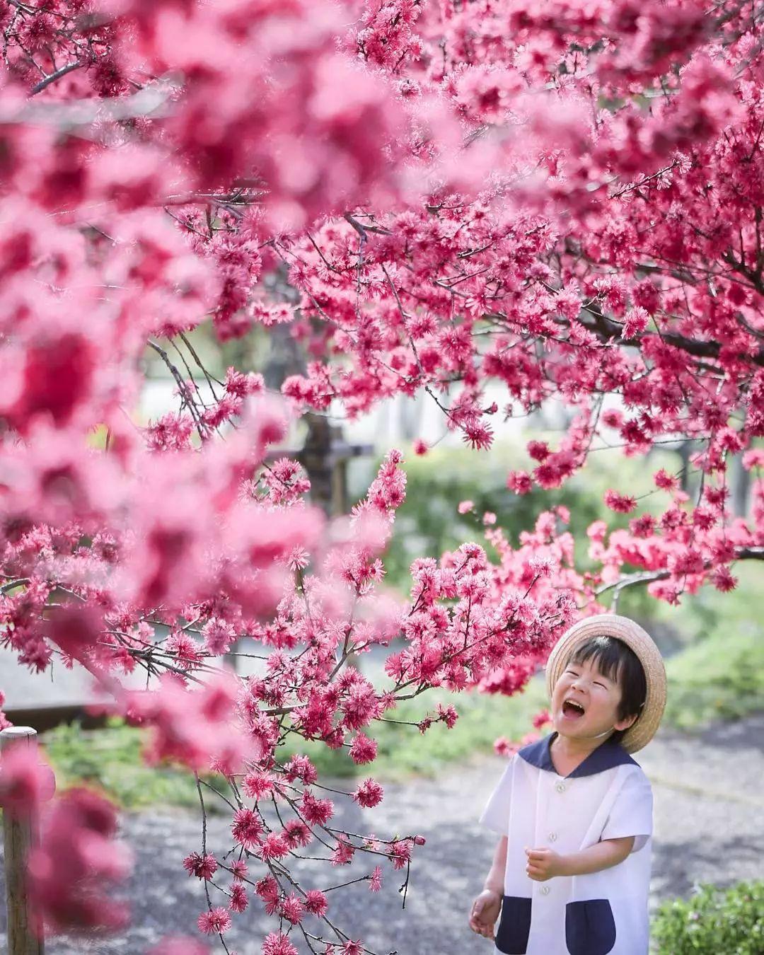 日本妈妈偷拍儿子3年,从摄影白痴逆袭成摄影大神!美成宫崎骏童话