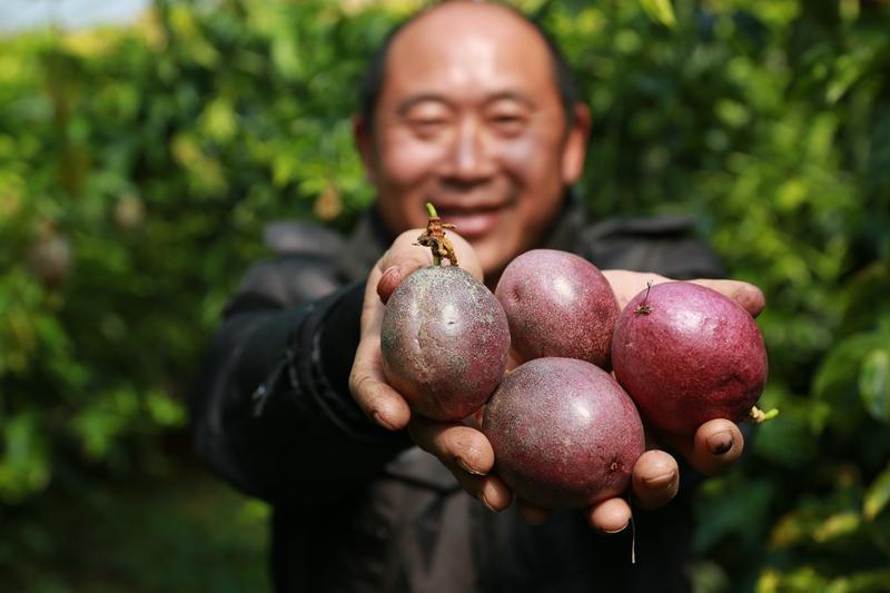 <b>一个神奇百香果,5种最简单不同做法,吃出千百滋味</b>