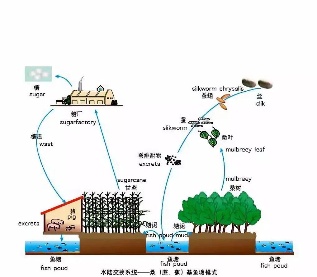 产品gdp_汶川地震重灾区十年经济发展报告 GDP十年翻3倍(3)