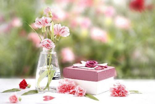 母親節,送母親什么禮物好,送花的話,康乃馨怎么配色,要不要加進去一些圖片