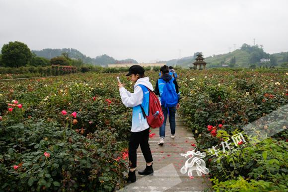 农村地坝花园设计图片