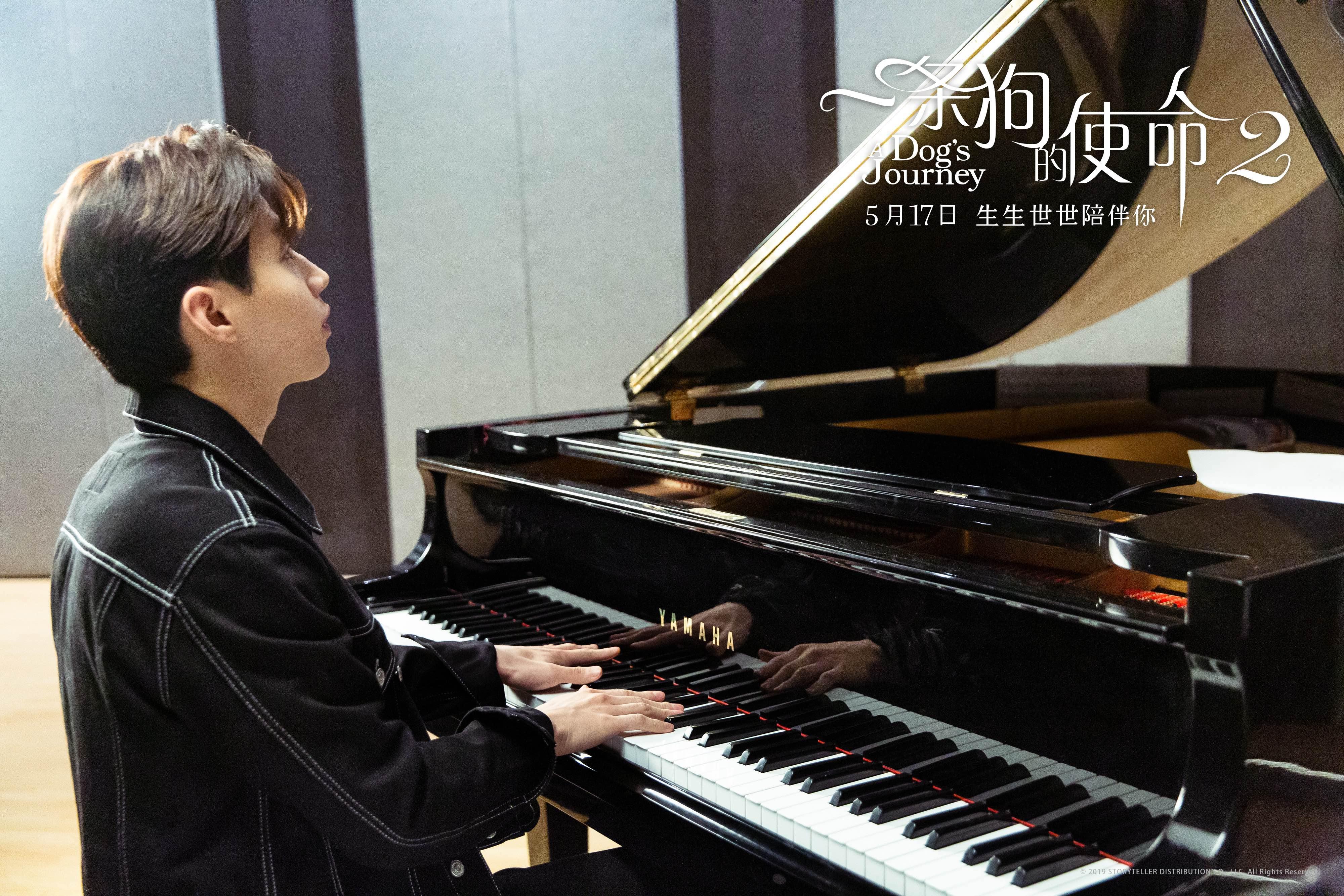 海吉星云狗服务平台_刘宪华献唱《一条狗的使命2》推广曲《当你孤单你会想起谁》_贝利