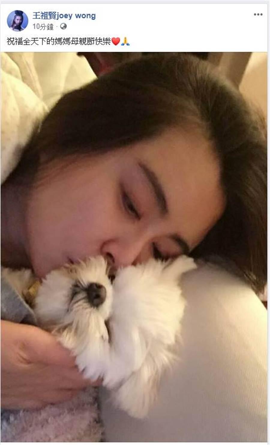 王祖贤素颜献吻宠物照,52岁的她被赞:没有老去的痕迹