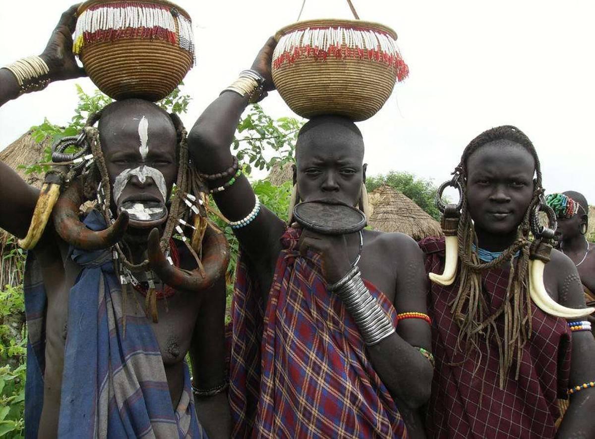 非洲睾酮最高的部落?