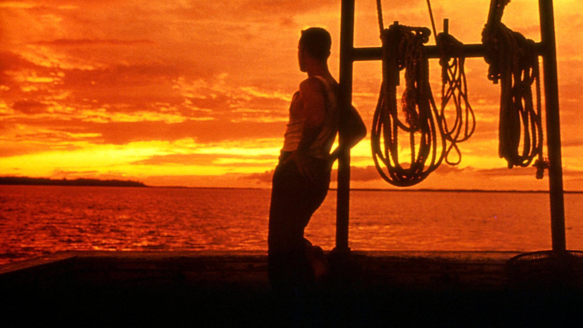《阿甘正传》带给我们的不仅有自强不息,永不言弃,还有无限思念