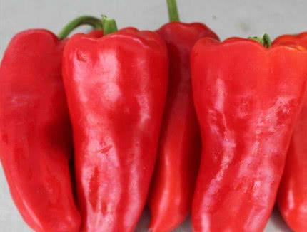 家常红椒酿肉,用这个做法制作,装盘后那个叫香