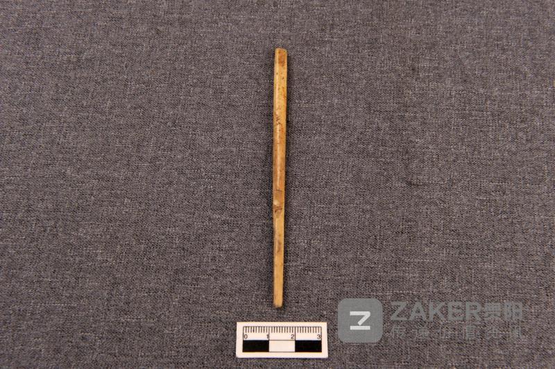 博物馆里的贵州 | 你不知道的贵州古人类和史前文化