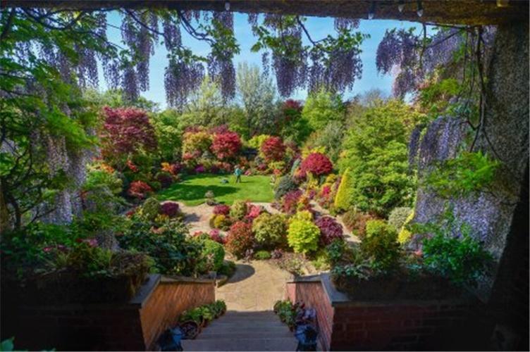 """原创 英国退休夫妇历时34年,花费13万打造绝美""""秘密花园"""""""
