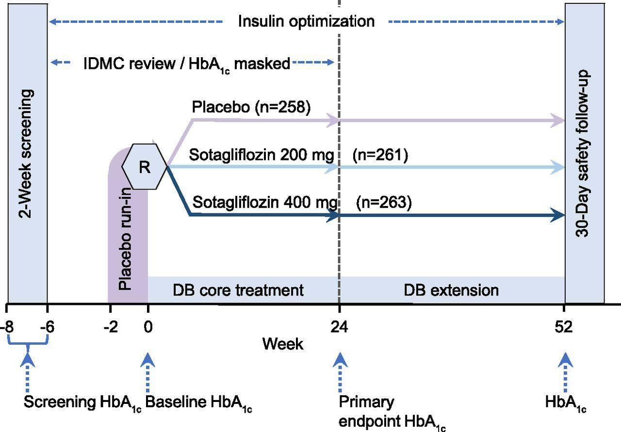 口服 治疗 1型糖尿病 SGLT1/2 双重抑制剂 Zynquista 失明 肾衰竭 心脏病 中风 下肢截肢 胰岛素