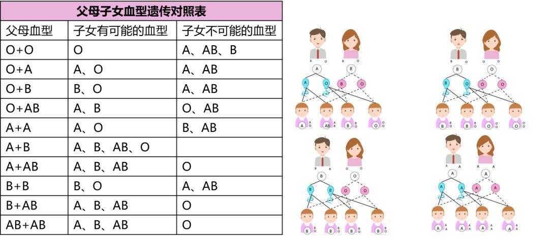 親子 血液 型