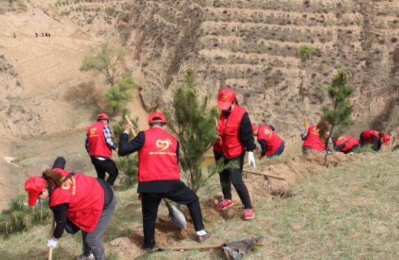 志愿者参加义务植树为打造偏关优美的绿色县城出力