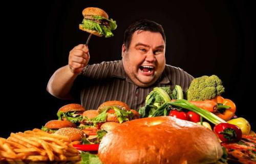 减肥可以吃羊肉吗图片